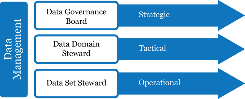 Data Management includes Data Governance Board (strategic), Data Domain Steward (tactical), and Data Set Steward (operational).